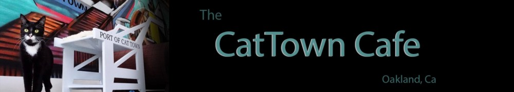 the Cat Town Cafe