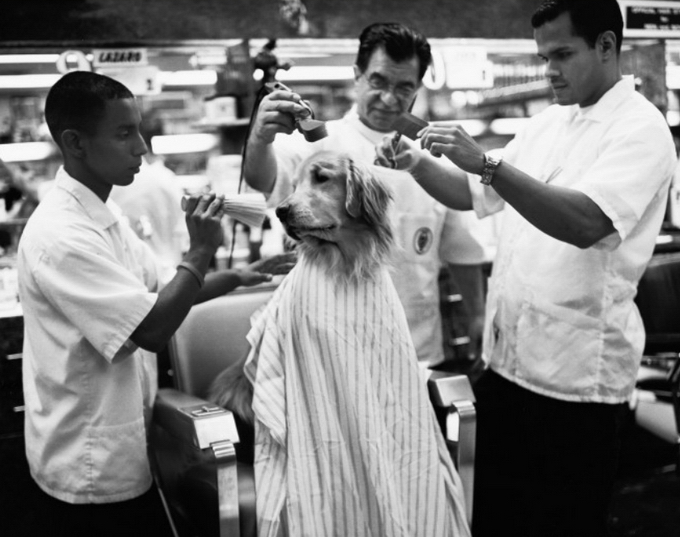 Photo Gallery Behind The Barber