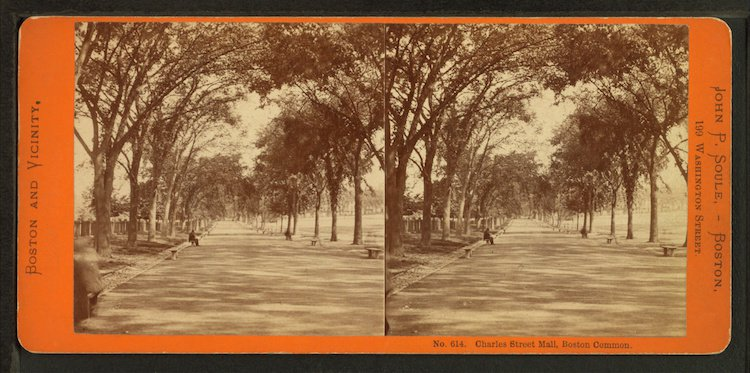 Stereoscopic Images. Usually, there's some sort of device you look into that holds both of these images. When looked at in this way, the image becomes 3D, with an added depth and perspective, giving the illusion of being there (vrs.org)