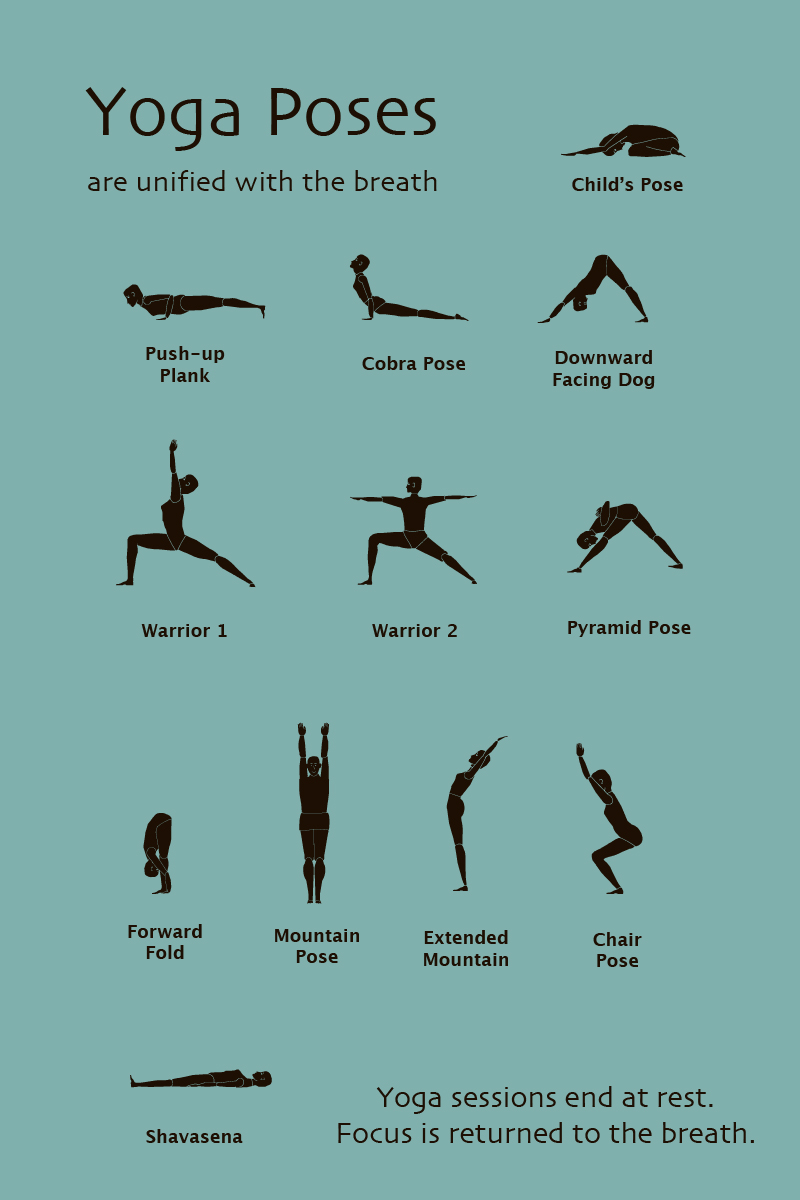 Basic Yoga Poses  Spirituality through Yoga